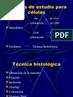 Nuevo Técnicas Histológicas