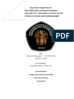 Paper Mazhab Chicago  berkaitan dengan Teori Peluru