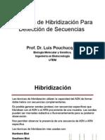 Técnicas de Hibridización Para Detección de Secuencias