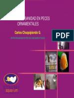 peces cuidados.pdf