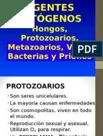 Agentes patogenos