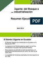 Bambú Gigante del Bosque a la Industrialización 4.pdf