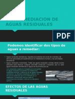 Biorremediacion de Aguas Residuales-Noguera