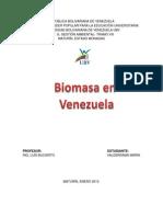 BIOMASA-maria.pdf