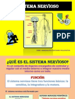 DIAPOSITIVAS DEL SISTEMA NERVIOSO (2DO SEMESTRE, 1ER PARCIAL)