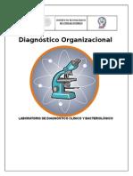 Diagnostico Organizacional de La Empresa
