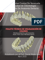 FOLLETO Técnica de Visualización
