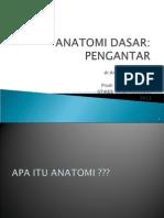Anatomi Dasar