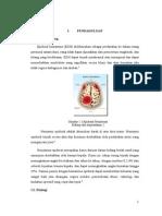 Referat BTLS Epidural Hematoma Editan6