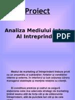 mediu intern de mk.ppt