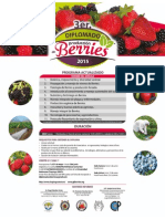 Cartel 3er Diplomado Berries