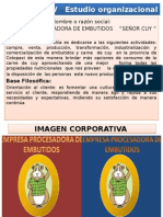 CAPÍTULO IV   Estudio organizacional  diaposssitivasss.pptx