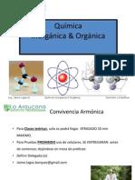 Quimica Ipla Montt
