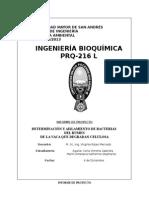 Informe de Proyecto Bioquimica9