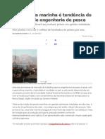 Aqüicultura Marinha é Tendência Do Mercado de Engenharia de Pesca