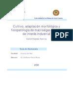 Cultivo Adaptacion Morfologica y Fisiopatologia de Macroalgas Marinas de Interes Industrial 0