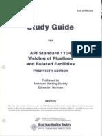 GUIA API 1104