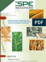 Comportamiento agronómico de cuatro híbridos de maíz (Zea mays) en Santo Domingo los Tsáchilas.