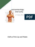 Gastroenterology  09 01 2011.pdf