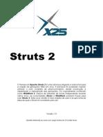 X25 - Struts 2
