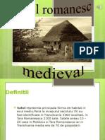Satul Medieval Romanesc 1