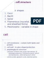 2.Bacteria Cell Structure