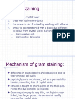 3. Gram Staining