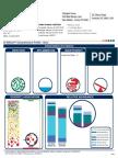GI Effects.pdf