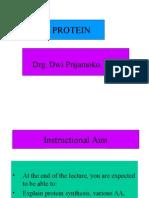 Amino Acid & Polypeptide Chain (Protein_1)