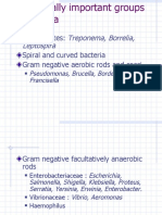 15.Medically Important Groups of Bacteria