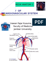 1. Anatomy of Cardiovascular System