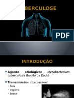 Seminario Tuberculose