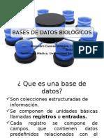 Bases de datos biológicos.pptx