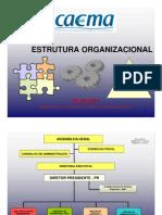 Estrura Organizacional Caema