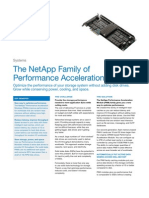 NetApp PAM Family Datasheet (August 2009)