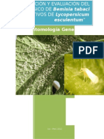 Descripción y Evaluación Del Ciclo Biológico de Bemisia Tabaci en Cultivos de Lycopersicum Esculentum