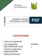 Presentacion Perfil Profesional