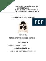 PAO CURTIEMBRE.docx