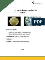 Informe-grupal-micro-Control-de-aire-Hongos-y-bacterias-en-medios-de-cultivo.docx