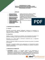 09-Planeacion Estrategica Financiera PIC