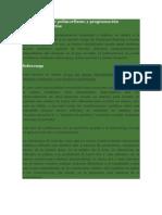Conceptos Sobre Polimorfismo y Programación Orientada A