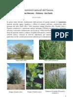 Gli ecosistemi naturali del Tevere