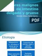 Tumores Malignos de Intestino Delgado y Grueso (1)
