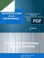 Introducción a La Enfermería Exposicion