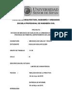 LIMITE DE CONSISTENCIA.docx