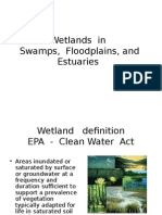 L9 Wetlands