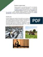 ECONOMIAS CENTRALMENTE PLANIFICADAS.docx