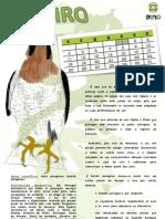 Calendário de Janeiro