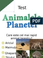 Test Animalele Planetei
