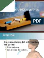 4 Aparato respiratorio.odp